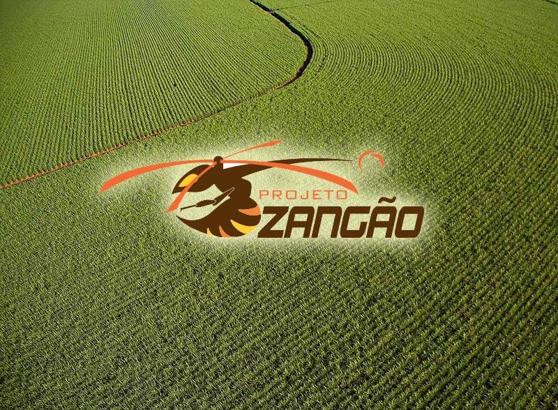Projeto Zangão